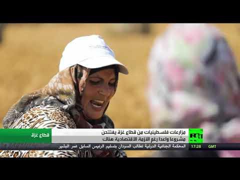 مبادرات أنثوية خلاقة في قطاع غزة