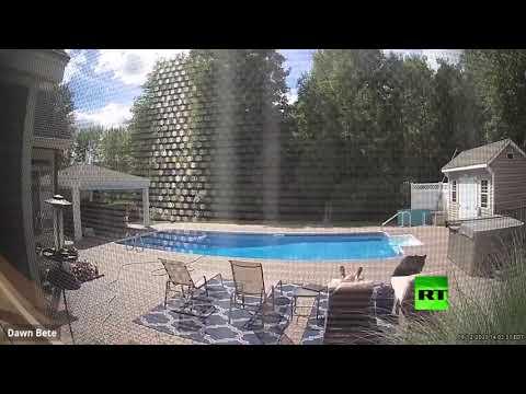 لقطات طريفة لدب يوقظ رجلًا كان مستلقيًا بالقرب من حمام سباحة